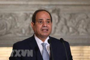 Ai Cập tái khẳng định ủng hộ lộ trình chính trị tại Libya