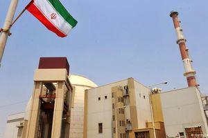 Cơ sở hạt nhân Bushehr của Iran ngừng hoạt động khẩn cấp