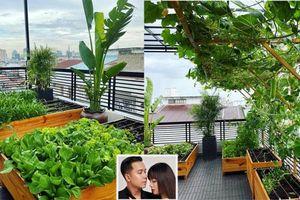 Vườn rau sạch trong biệt thự 40 tỷ đồng của ca sĩ Lê Hoàng