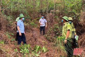 Lãnh đạo Sở NN&PTNT kiểm tra công tác phòng cháy, chữa cháy rừng tại thị xã Nghi Sơn