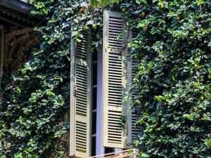 Cận cảnh ngôi biệt thự phủ toàn cây xanh giúp chủ nhà tránh nắng nóng gay gắt