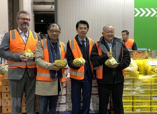 Xây dựng thương hiệu nhãn Việt Nam tại Australia