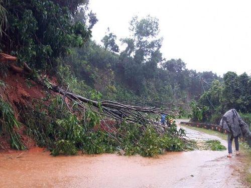 Kon Tum: Mưa lớn khiến nhiều khu vực bị cô lập, di dời hàng trăm người dân