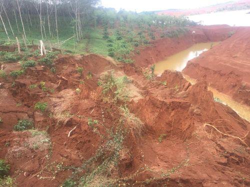 Đắk Nông: Sụt lún đất kinh hoàng 'nuốt trọn' hàng ngàn mét vuông cà phê