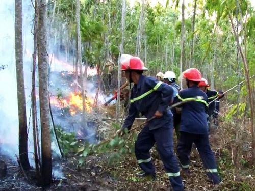 Hỏa hoạn thiêu rụi gần 90 ha ở Phú Yên, sau 2 ngày mới được dập tắt