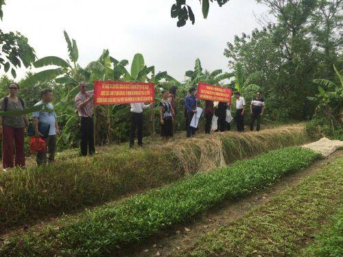 Hoãn phiên tòa xử vụ án Lừa đảo dự án Viet Inc do vắng mặt công ty Hưng Hải