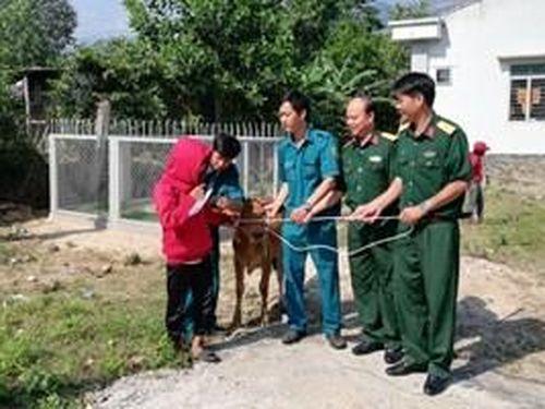 Bộ CHQS tỉnh Khánh Hòa trao bò tặng hộ nghèo huyện Khánh Vĩnh