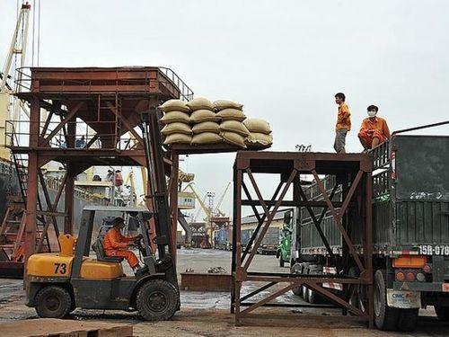 Xuất khẩu gạo: Không còn nỗi lo phụ thuộc