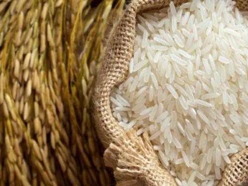 Giá gạo Việt thấp nhất trong 12 năm