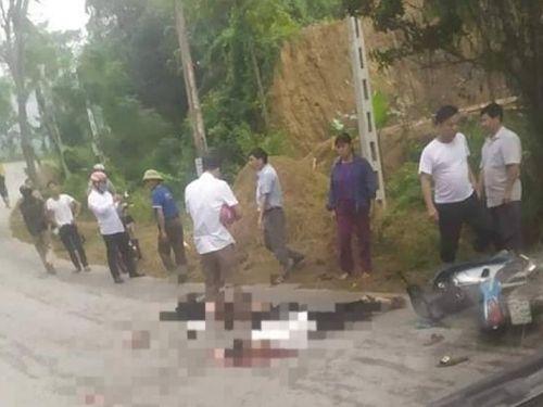 Hai vợ chồng thương vong do đâm phải chó thả rông trên đường