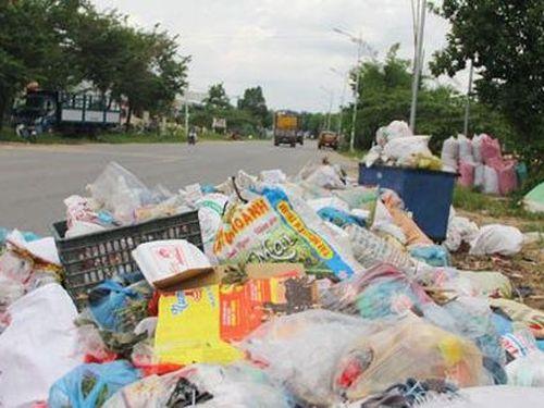 Khiếp đảm với rác