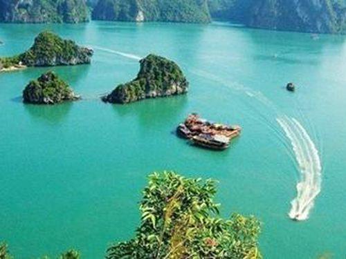 Giấc mơ vịnh đảo Cát Bà