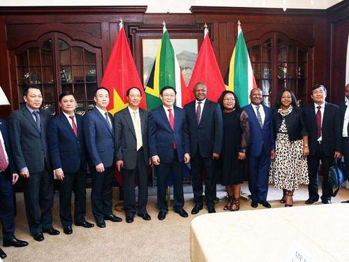Việt Nam thúc đẩy quan hệ hợp tác với Nam Phi