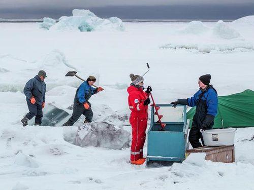 Greenland và vai trò trong việc dự đoán những thay đổi khí hậu của Trái Đất