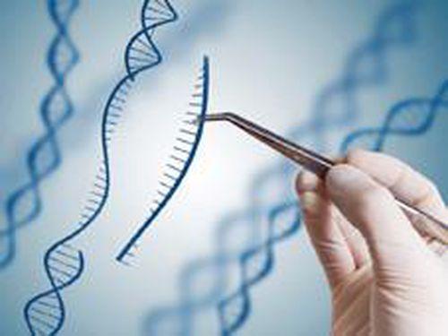 Thành công trong thử nghiệm CRISPR chống ung thư