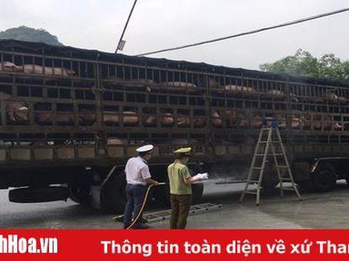 Kiểm soát, lưu thông vận chuyển động vật còn nhiều khó khăn