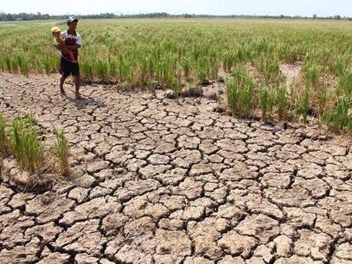 Đập Cảnh Hồng giảm xả nước, ĐBSCL bị hạn mặn uy hiếp