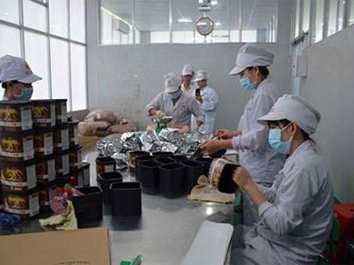 Nông sản Việt - vì sao xuất nhiều, được ít?