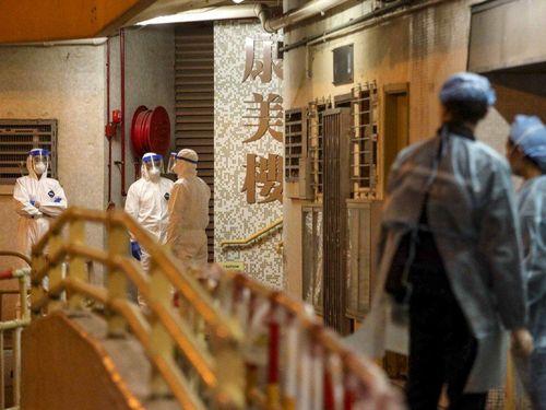 Hong Kong sơ tán chung cư bị nghi lây virus corona qua đường ống