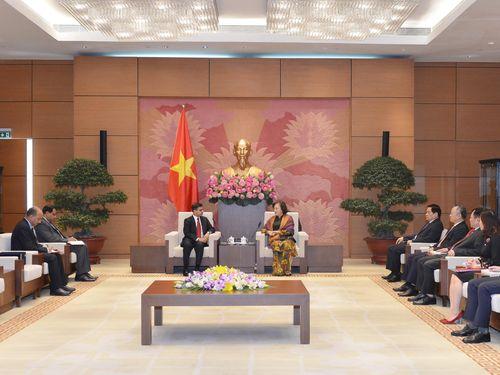 Chủ tịch Quốc hội Nguyễn Thị Kim Ngân tiếp Đại sứ Ấn Độ tại Việt Nam