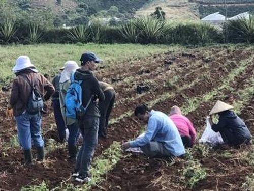 Tìm kiếm thị trường cho nông sản