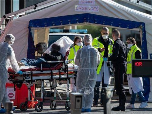 Pháp ghi nhận số ca tử vong trong ngày cao kỷ lục với 499 người