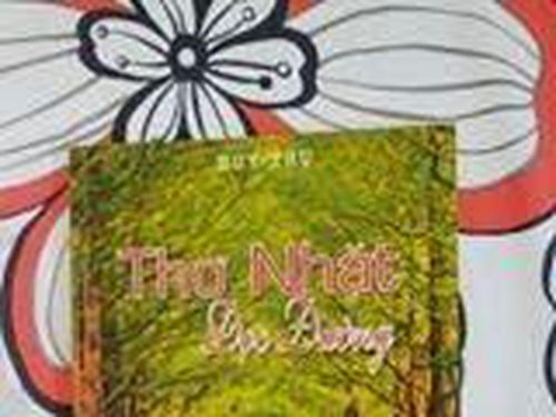 Huy Trụ - Người nhặt thơ từ cỏ