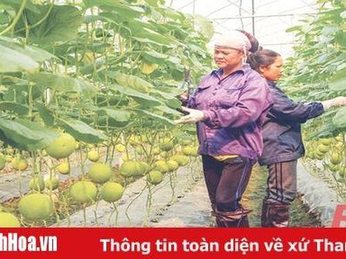 Bài cuối: Để doanh nghiệp đầu tư vào nông nghiệp phát triển bền vững