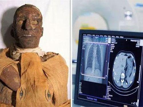 Phát hiện rùng rợn về cái chết của pharaoh Ai Cập