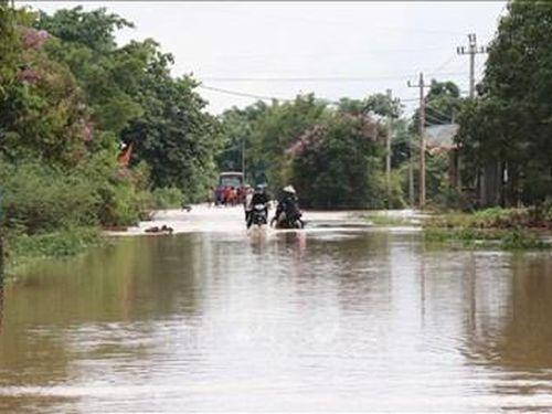Mưa lớn gây ngập lụt gần 1.000 nhà dân cùng hàng ngàn ha cây trồng ở Đắk Lắk