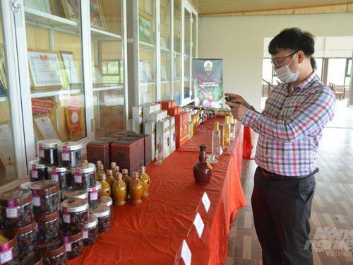 Thứ trưởng Trần Thanh Nam kiểm tra nông thôn mới tại Sơn La