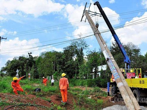 Ngành Công Thương Đồng Tháp: Góp phần thúc đẩy phát triển kinh tế nông thôn