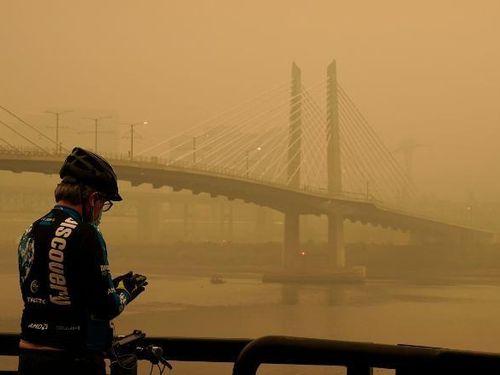28 người thiệt mạng vì cháy rừng ở Mỹ
