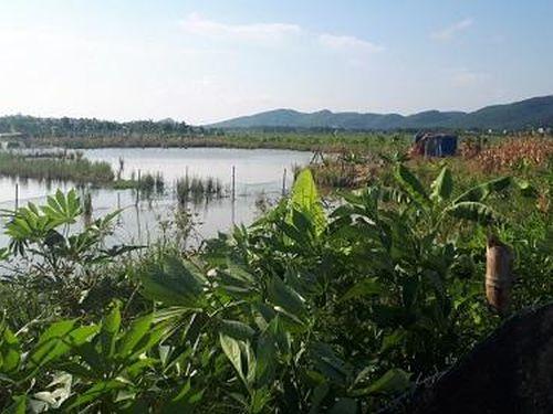 Thanh Hóa: Cán bộ xã 'tiếp tay' cho một hộ dân ngang nhiên chiếm đất nông nghiệp để làm trang trại