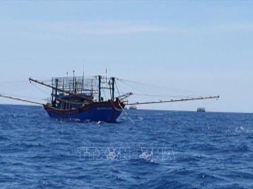 Kiên quyết ngăn chặn khai thác hải sản bất hợp pháp