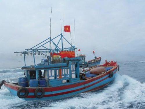 Tàu ngư dân bị đâm chìm, tỉnh Quảng Ngãi hứa cho tiền đóng lại nhưng 6 tháng qua không giải ngân