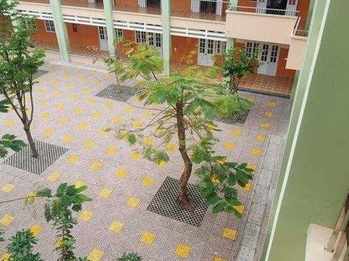 Vũng Tàu: Làm rõ vụ nữ sinh lớp 7 nghi nhảy lầu tự tử tại trường