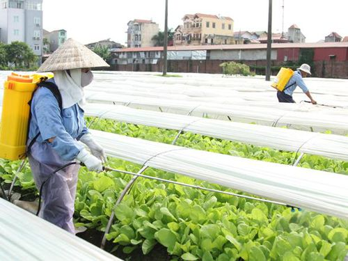 Luật Bảo vệ môi trường 2020: Tăng vai trò giám sát của nông dân
