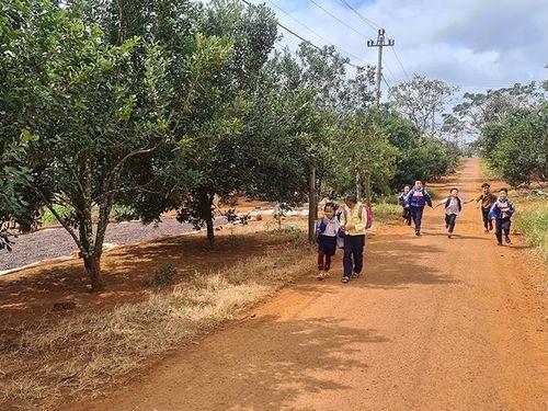 Ðắk Nông quan tâm phát triển kinh tế vùng đồng bào M'Nông