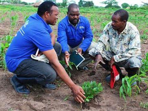 Bài 4: Kinh nghiệm quốc tế về bảo hiểm nông nghiệp (tiếp theo và hết)