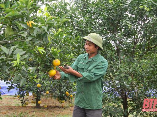 Đảng bộ xã Quảng Phú nâng cao chất lượng sinh hoạt chi bộ