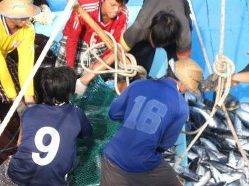 Ngư dân bị tai nạn lao động trên biển được hỗ trợ y tế kịp thời