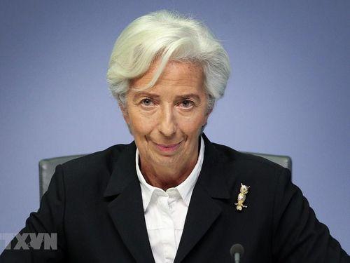 ECB cảnh báo các ngân hàng Eurozone về rủi ro nợ xấu