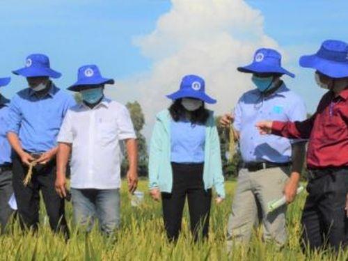 Triển khai 6 chương trình phát triển giống phục vụ nông nghiệp