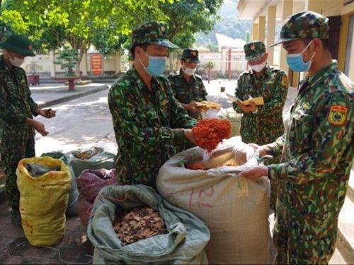 Dặm dài biên ải: Cuộc chiến thảo dược ở Chi Ma