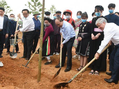'Chúng ta trồng cây xanh để thúc đẩy quốc kế dân sinh'