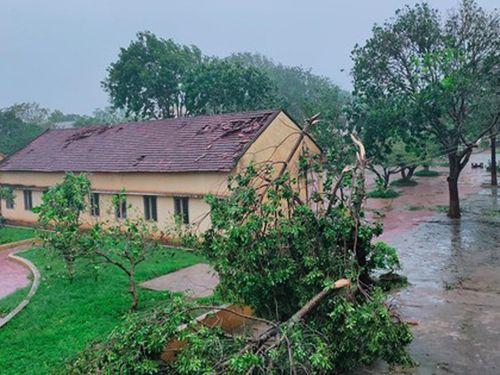 UNDP viện trợ 4 tỷ đồng khắc phục thiên tai ở Quảng Ngãi