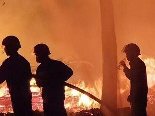 Vườn cây rộng 10.000m2 ở Bình Phước bị lửa thiêu rụi trong đêm