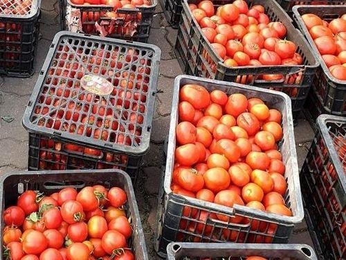 'Gỡ khó' việc thu mua, tiêu thụ nông sản vùng đang có dịch COVID-19