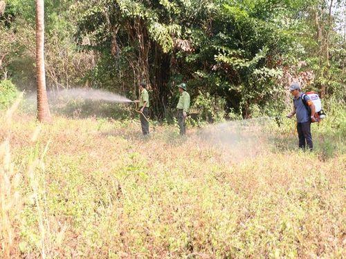 Một ngày, xảy ra hai vụ cháy rừng tại An Giang